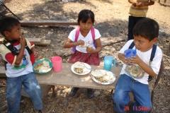 alimentaciongrupo8-072_41860680370_o
